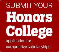 Apply for the Honors College