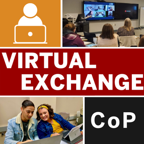 Virtual Exchange Community of Practice